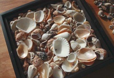 Дивноморск фото с нудиского пляжа